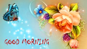Top New Good Morning Photo Pictures Download