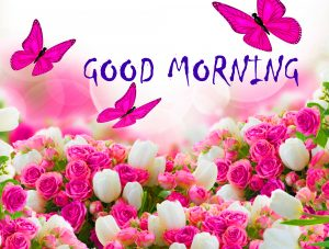 Good Morning Status Images Wallpaper HD Download