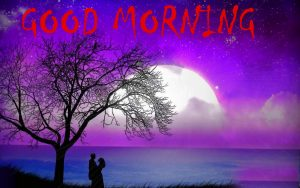 Good Morning Status Images HD Download