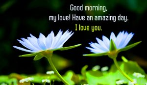 I love you Good Morning Images Wallpaper For Her HD Download