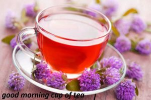 Good Morning Tea Cup Photo Pictures Download