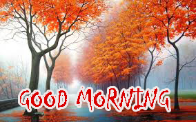 Good Morning Sites Images Pics Wallpaper Download
