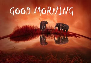 Good Morning Sites Images Pictures Download