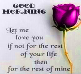 Stickers New Good Morning Photo Pictures Download