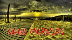 Good Morning Status Photo Wallpaper Download
