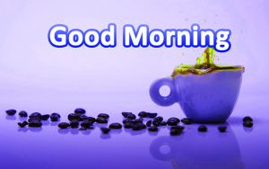 Stickers Good Morning Wallpaper Download