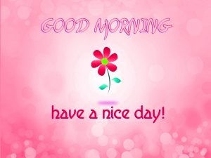Stickers Good Morning Photo Pictures Download