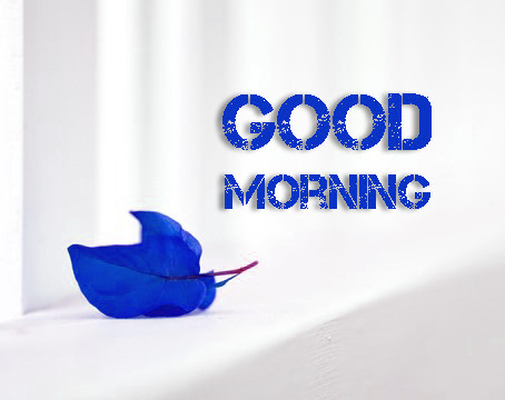Morning Photos – 241+ Latest Morning Images Pictures Wallpaper Pics