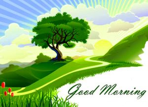 Free Best Happy Good Morning Images Photo Pics Download