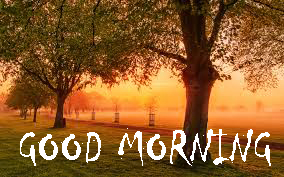 Good Morning Photo Pictures Download
