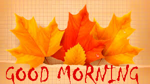 169+ Good Morning Status Images HD Download