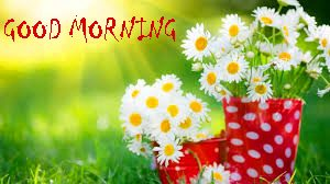 Good Morning Sites Images With Flower