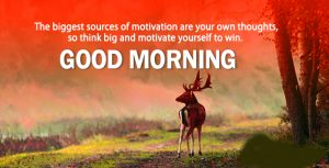 Gud Morning Pictures Photo With Quotes