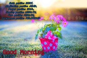 Free Best Happy Good Morning Photo Download With Quotes
