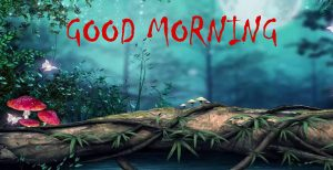 Good Morning Sites Images Wallpaper HD