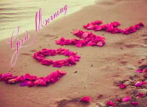 HD Good Morning Images Photo Pics With Love