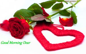Wife good morning Images Wallpaper Pics With Red Rose
