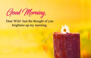 Wife good morning Images Wallpaper Pictures Free Download