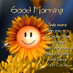 HD Good Morning Images Photo Pics Download With Quotes