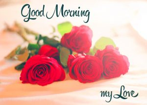 HD Good Morning Images Photo Pics With Red Rose Flower