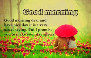 HD Good Morning Images Photo Free Download