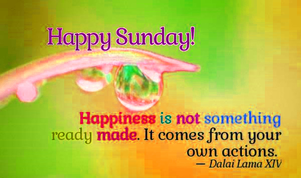 242+ Sunday Quotes Images Photo Pics Download