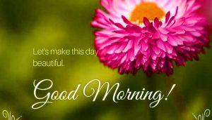 HD Good Morning Images Wallpaper Free Download