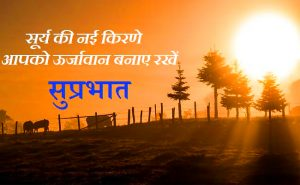 Good Morning Quotes In Hindi Font Images Pictures Wallpaper HD Download