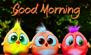 HD Good Morning Images Wallpaper For Facebook & Whatsaap