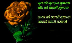 Romantic Hindi Shayari Images Photo Pics With Red Rose