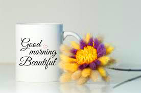 Husband Good Morning Images Photo Pictures With Flower