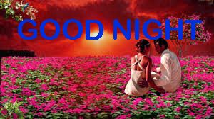Romantic Good Night Images Photo Pics HD Download