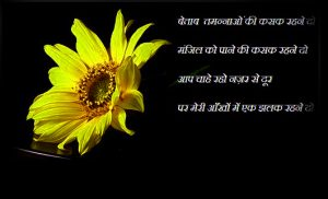 Hindi Shayari Images Photo Pics With Flower
