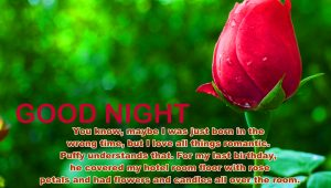 Romantic Good Night Images Photo Pic With Red Rose
