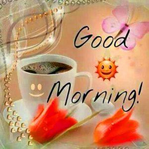 HD Good Morning Images Photo Pics Download