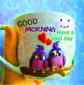 HD Good Morning Images Pictures Free Download
