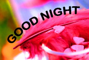 Romantic Good Night Images Photo Pictures HD Download