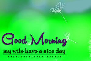 Wife good morning Images Photo Pics Free Download
