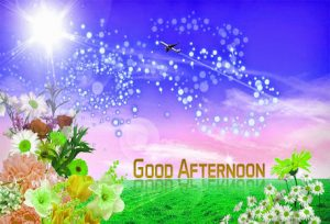 Good Afternoon Images Pictures In Hindi