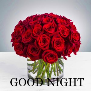 Good Night Images Photo Pic HD Download