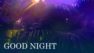 Gud nyt Images Photo Pictures Free Download In HD