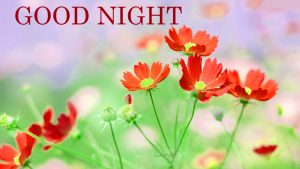 Gud nyt Images Photo Pictures Pics Download With Flower