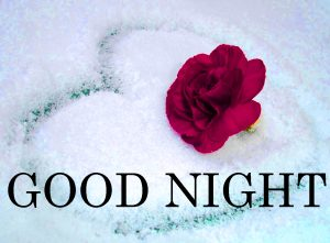 Gud nyt Images Photo Pics Wallpaper With Flower