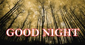 3D Good Night Images Photo Pics Download