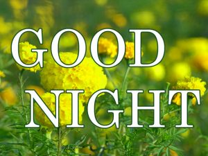 Gud nyt Images Photo Wallpaper Download