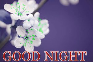 Good Night Images Photo Pics Free HD Download