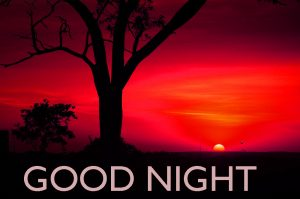 Gud ni8 Images Wallpaper Pictures In HD Download