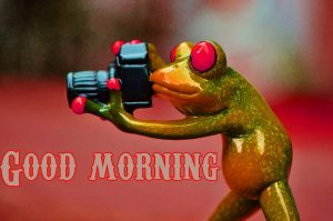 Funny Good Morning Wishes Images Photo Wallpaper Pics