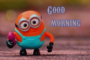 Funny Good Morning Wishes Images Wallpaper Pictures Download