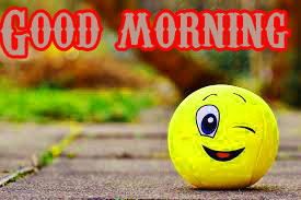 Funny Good Morning Wishes Images Wallpaper Download